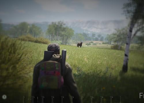 Oh ein Pferd