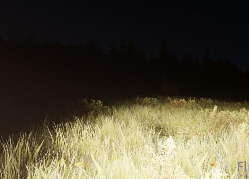 Alleine in der Dunkelheit :(