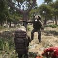 Ein spring Bär