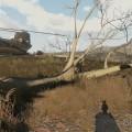 Der Baum des Todes!!!